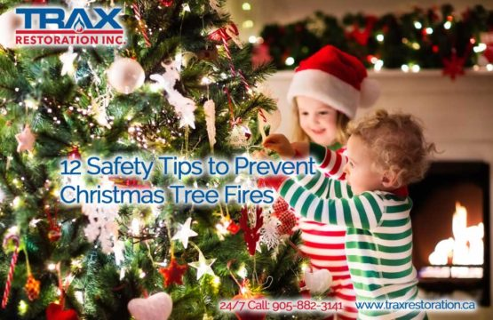 12 Safety Tips to Prevent Christmas Tree Fires