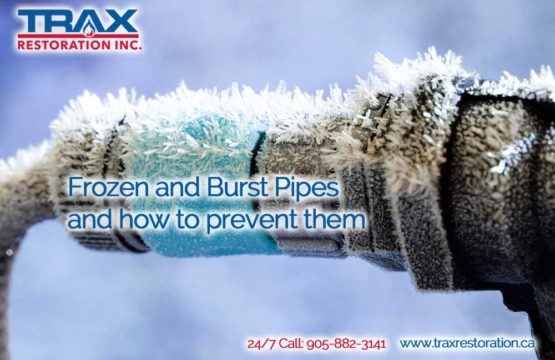 Frozen and Burst Pipes and how to prevent them